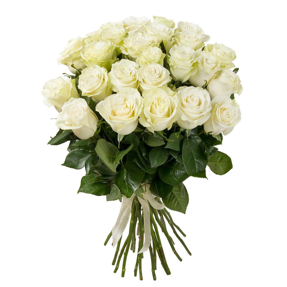 Цветы букет белые розы
