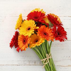Цветы дешево купить москва